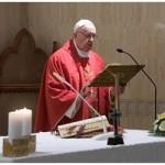 Papa: Evangelho se anuncia com humildade, não com o poder