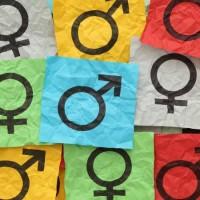 A hilária Ideologia de Gênero